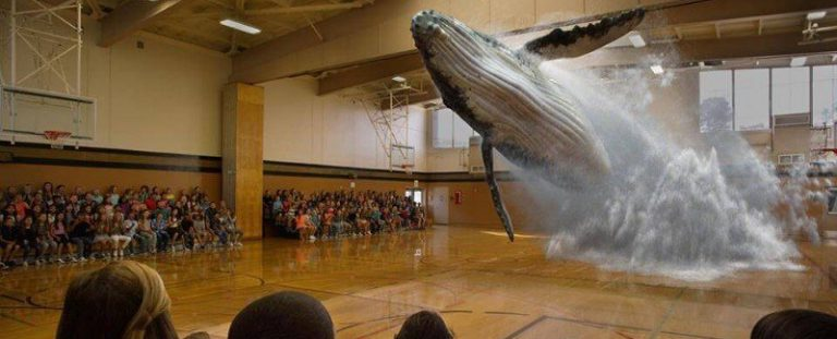 In a school building, children see a virtual whale jumping. They're using Augmented Reality technology