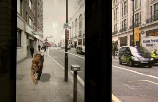 Quadro retirado da campanha promocional da Pepsi Max, mostrando o outro lado da parada de ônibus enriquecido com um tigre virtualmente projetado com o auxílio de uma câmera instalada do outro lado e um monitor do lado de dentro da parada de ônibus.